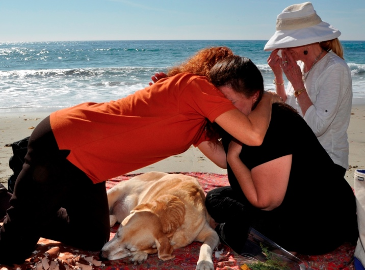 Understanding Death | Home Pet Euthanasia of Southern California