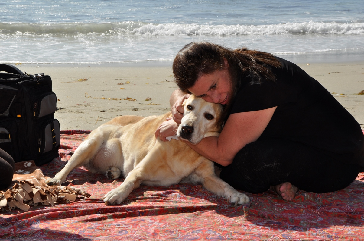 Natural Death Or Euthanasia For Dogs