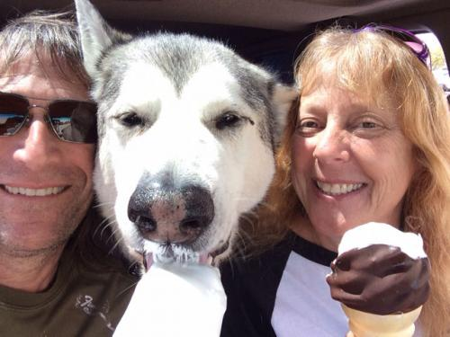 Cody home pet euthanasia of southern california thanks from donna and myself for helping cody to never have a bad day dr meg was outstanding and her follow up call meant so much solutioingenieria Choice Image